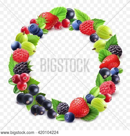 Colorful Berries Round Set With Gooseberry Strawberry Cranberry Bilberry Black Currant Raspberry On