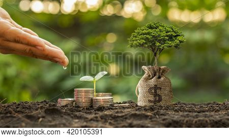 Hands Are Watering Plants Growing On Piles Of Money And Savings Bags Growing Out Of The Soil In The