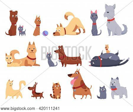 Cats And Dogs Friends Collection. Different Kinds Of Together Sitting, Lying, Playing Or Walking Iso
