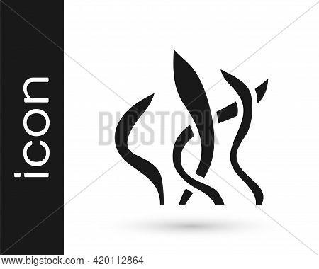 Black Seaweed Icon Isolated On White Background. Underwater Seaweed Spirulina, Aquatic Marine Algae
