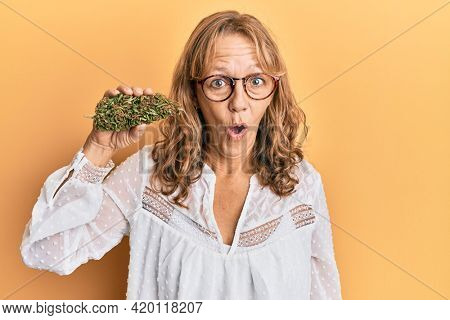 Middle age blonde woman holding medical marijuana plant bud scared and amazed with open mouth for surprise, disbelief face