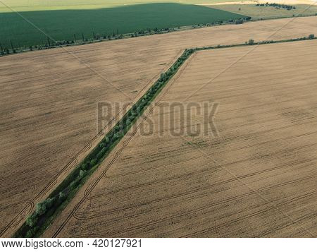 An Old Irrigation Canal Overgrown With Trees Among A Wheat Field, Aerial View. Dry Irrigation Canal
