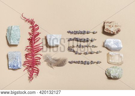 Dry Fern, Lavender And Crystal Minerals On Beige Background. Magic Rock For Crystal Ritual, Witchcra