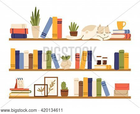 Book Shelves. Rack Books, Interior Bookshelf With Cat, Plants In Pot And Accessories. Isolated Comfy