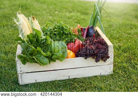 Grocery Box With Fresh Vegetables Standing On Green Grass Outdoo