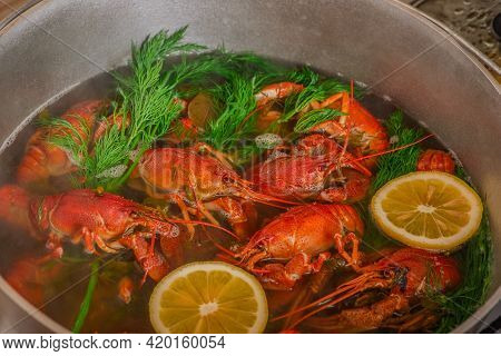 Cooking Of Crayfish With Herb At A Kitchen. Crayfish Are Boiled In Water In A Saucepan With Lemon An