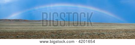 Rainbow In Steppe