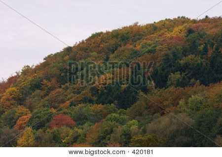 Ruhr Valley Hill In Autumn