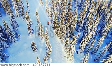 Woman Cross Country Skiing Through An Idyllic Winter Wonderland With Snow Capped Trees.
