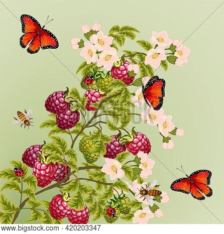 Illustration With A Branch Of Raspberries.vector Illustration With A Branch Of Raspberries And Insec