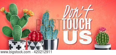 Blooming Cacti Varieties In Ornamental Black White Pots Against Trendy Coral Background Realistic Ho
