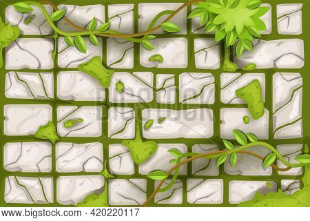 Stone Wall Vector Cracked Rock Texture, Old Ancient Tile Background, Moss, Vine, Green Leaf. Brick B