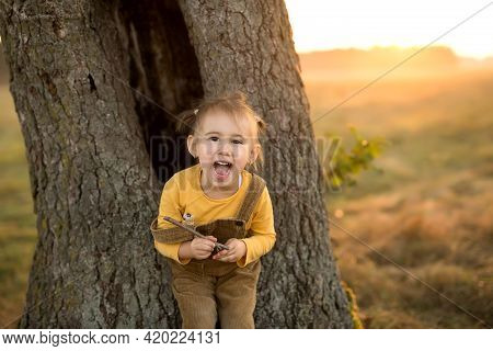 An Emotional Child At A Large Tree Trunk At Sunset. Loud Children's Laughter. A Child Plays With A D