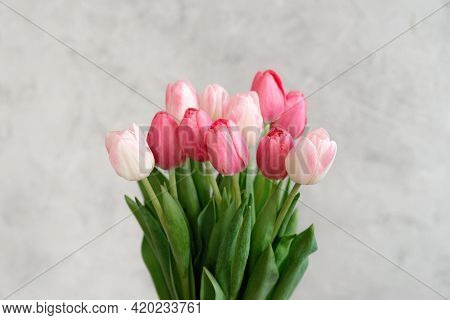 A Bouquet Of Delicate Pink Tulips For The Holiday. Mother's Day, Birthday, Valentine's Day. Delicate