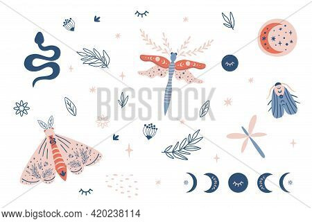 Moon Moth Clipart, Celestial Butterfly, Moth, Moon Phases Kids Set, Snake, Insects, Botany Leaves El