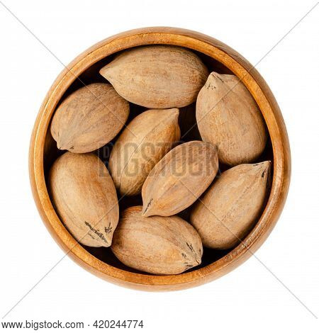 Unshelled Pecan Nuts, In A Wooden Bowl. Whole Pecans, Seeds And Edible Nuts Of Carya Illinoinensis.