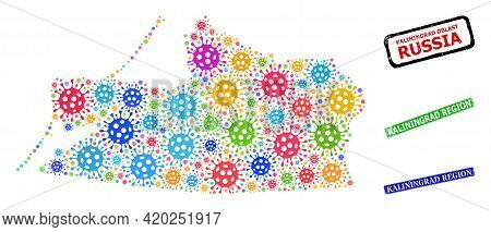 Vector Contagious Mosaic Kaliningrad Region Map, And Grunge Kaliningrad Region Badges. Vector Colorf