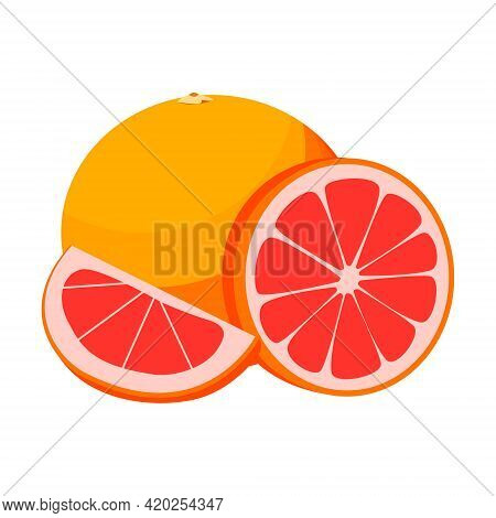 Grapefruit, Whole Round And Half Grapefruit. Vector Isolated On A White Background
