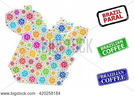 Vector Bacilla Mosaic Paral State Map, And Grunge Brazilian Coffee Seals. Vector Colored Paral State