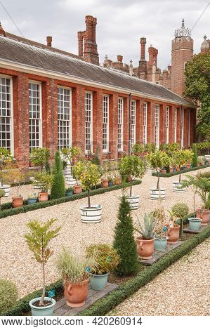 London, Uk - July 22, 2011. Plant Pots And Garden Containers With Standard Trees. Hampton Court Pala