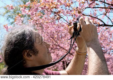 Photographer In The Park Taking Pictures Of Sakura Flowers. Caucasian Man Photographer Photographs P