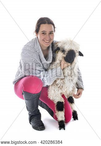 Valais Blacknose And Woman In Front Of White Background