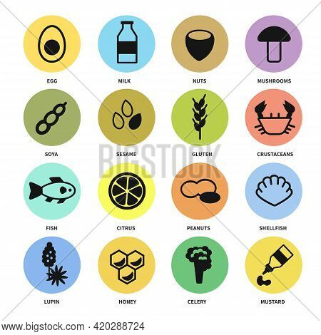 Large Set Of Icons With The Main Allergens In Food
