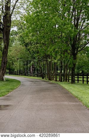 Driveway To Horse Farm In Rural Kentucky