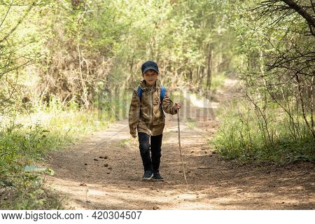Little Boy Is Walking Through The Forest. Hiking In Mountain With Walking Stick And Backpack. Little