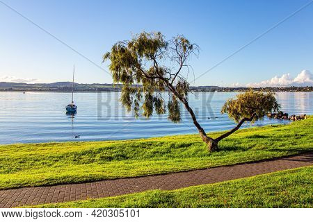Warm evening on the lake. Magnificent sunset. New Zealand. The largest Lake Taupo. The magnificent lake is a popular holiday destination for tourists. The path along the lake shore.