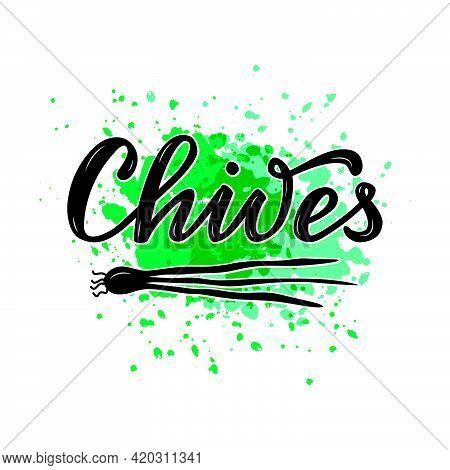 Vector Illustration Of Chives Lettering For Packages, Product Design, Banner, Sticker, Spice Shop Pr