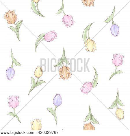 Seamless Pattern. Spring Delicate Flowers Tulips. Digital Printing