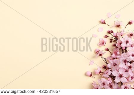 Blossoming Spring Tree Branch As Border On Beige Background, Flat Lay. Space For Text