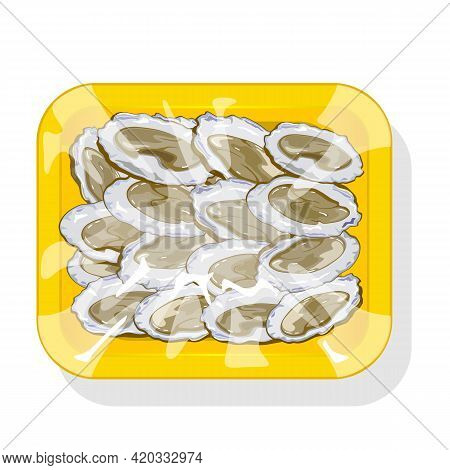 Cartoon Of Raw Clam In Shell, Package Of Iced Seafood Product. Vector Ocean Food Delivery To Restaur