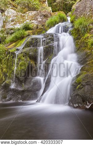 Atlantic Green Rainforest With Cascade And Creek. Galicia, Spain