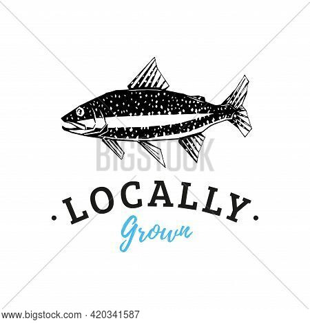 Drawing Of Trout In Vector. Logo With Lettering.