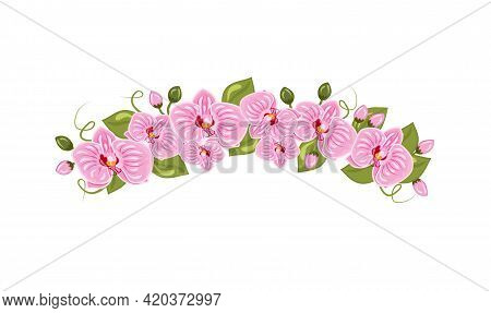 Vector Illustration Of Orchid Flowers Diadem In Cartoon Style Isolated On White Background. Feminine