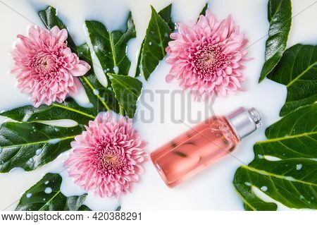 Pink Bottle Of Cleanser, Shower Gel Or Other Cosmetic Product In Milk Bath With Pink Chrysanthemum F