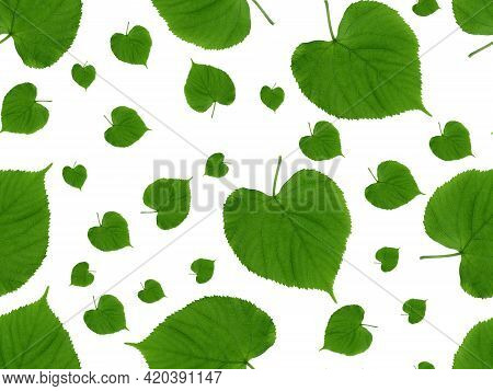 Green Leaves Seamless Pattern. Green Leaves Of Rounded Shapes In Different Sizes On A White Backgrou