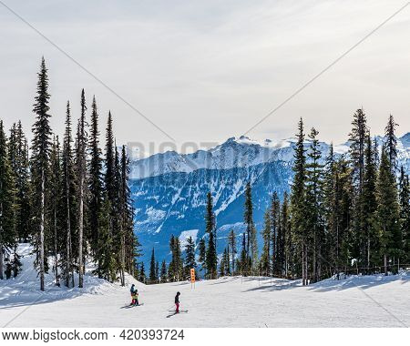 Revelstoke, Canada - March 17, 2021: People Skiing In Mountain Forest Scenic Landscape Dressed In Wi