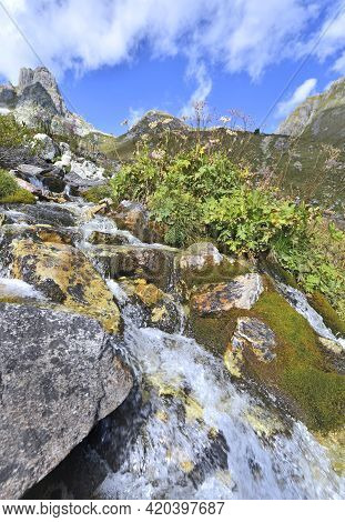 Alpine Torrent  Flowing In A The Rocks With Mountain Range Background
