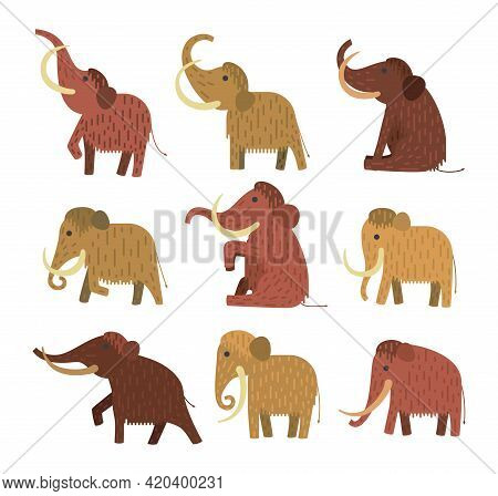 Flat Cartoon Set Of Mammoth In Different Poses - Vector Illustration