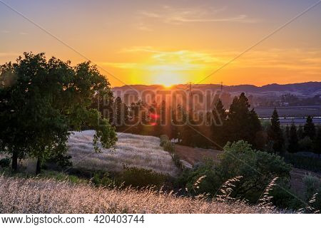 Landscape With A Sun Flare At Sunset In Napa Valley, California, Usa