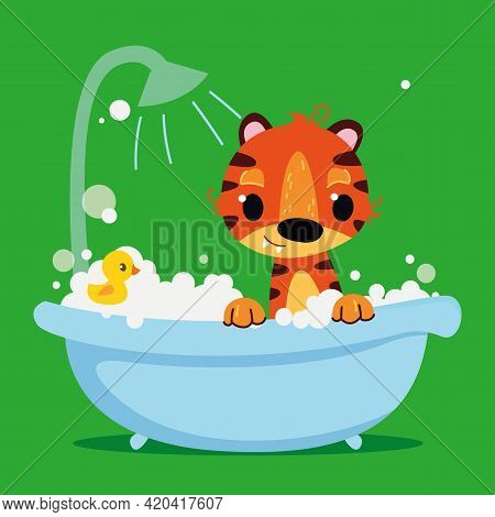 Red Tiger Cub Baby In The Bath. On A Green Background Bathroom. Vector Print For Children. Cartoon C