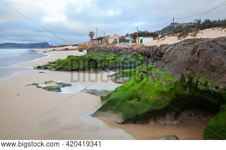 Wet Coastal Stones With Green Algae On The Beach Of Porto Santo Island, Madeira Archipelago, Portuga