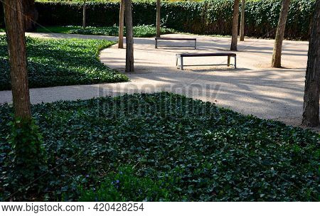 Under The Shady Treetops Is A Park Beige, Yellow Sand Path From A Sandstone Wall. Perennials Bloom T
