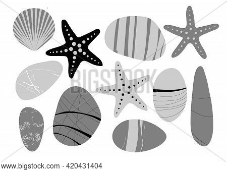 Achromatic Beach Pebbles, Starfish, Shell Set. Various Grey Shapes. Modern Illustration In Vector. D