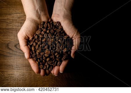 Beautiful View Of Hands Accurate Holding Roasted Aromatic Coffee Beans Against Background Wooden Sur