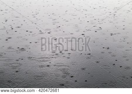 Raindrops On A Calm River Surface. Texture Of Raindrops And Circles On The Water During Heavy Rain.
