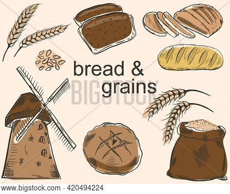 A Set Of Bread And Grains. Vector Sketches Of Various Breads, Grains And A Mill. Agriculture, Cultiv